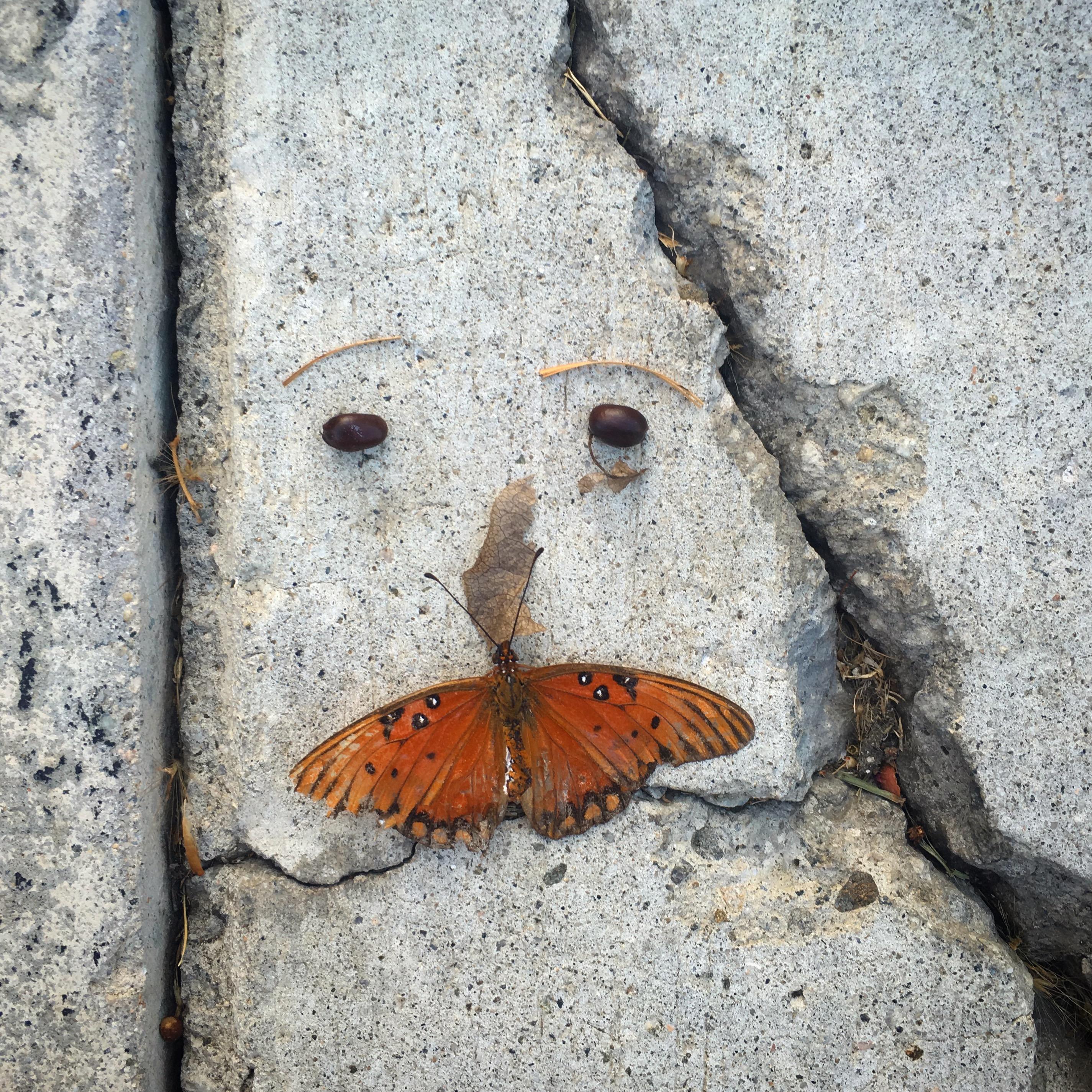 sidewalk-face_butterfly-mustache